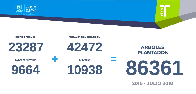 Datos Plan T de la Alcaldía de Bogotá