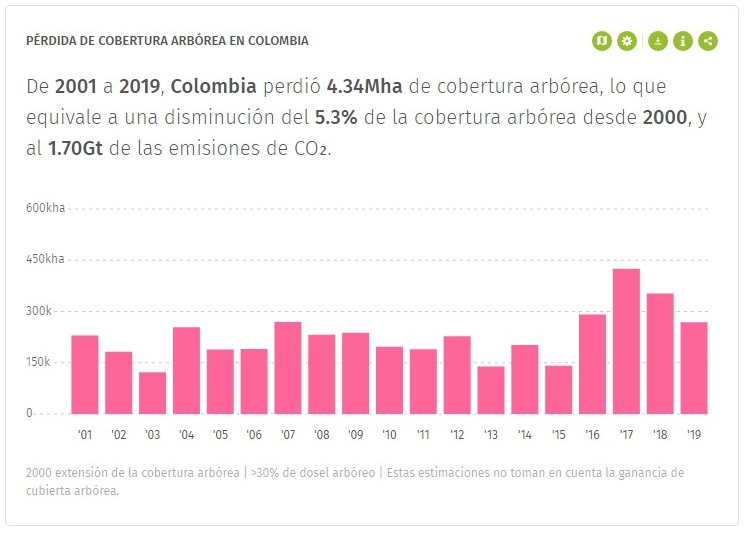 Global forest watch Colombia