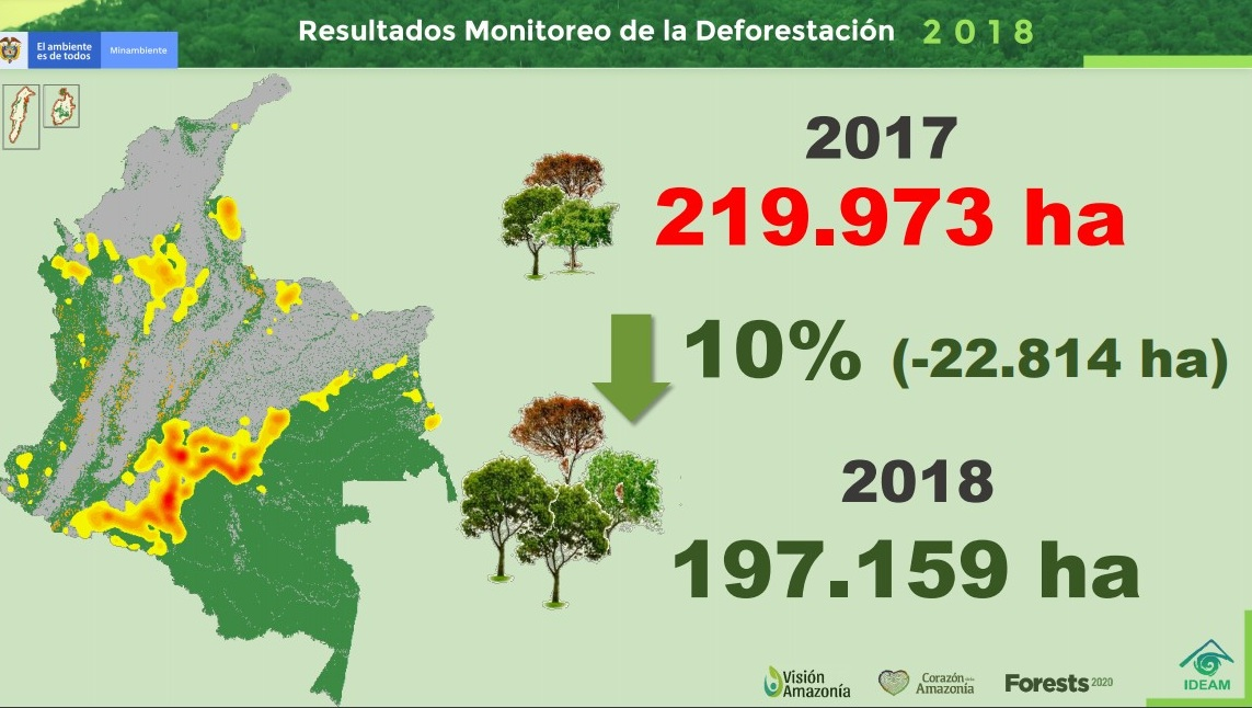 Informe deforestación IDEAM 2018
