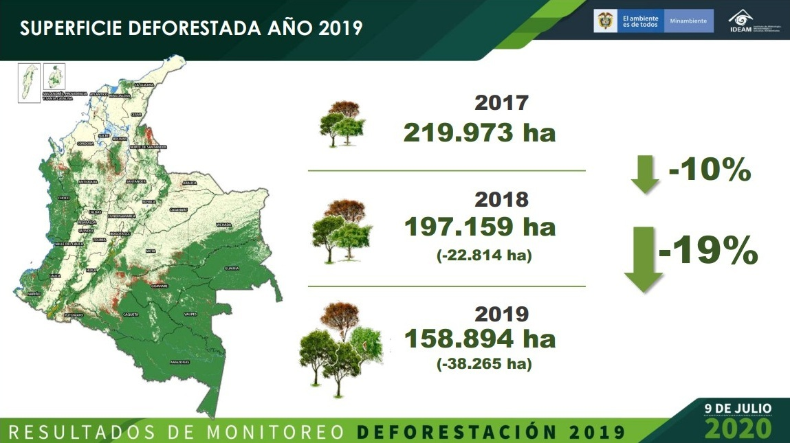Informe deforestación IDEAM 2019