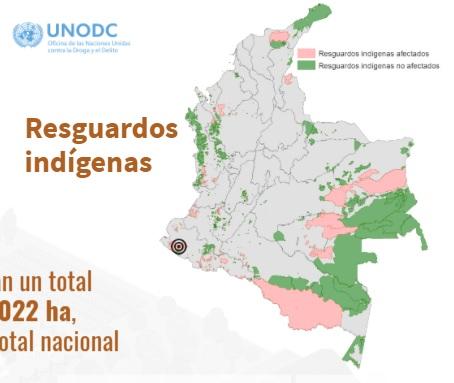 Pantallazo UNODC 2019 resguardos indigenas
