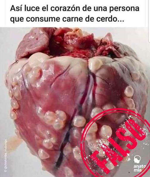 Foto de corazón con pústulas