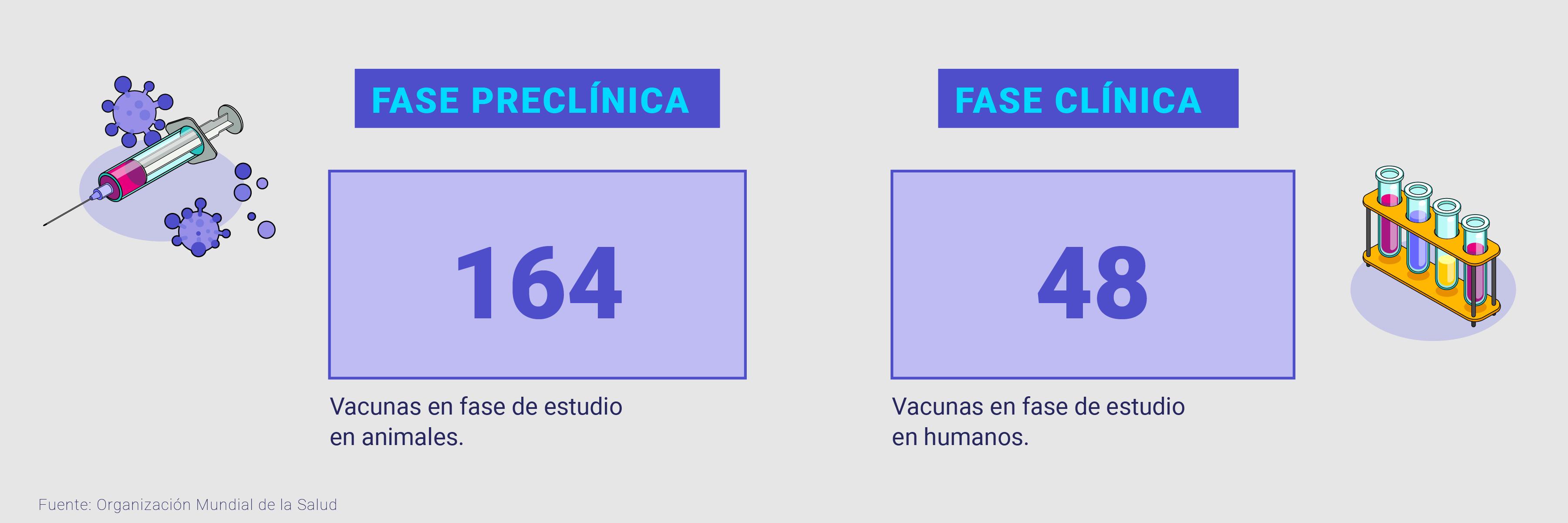 cuántas vacunas hay